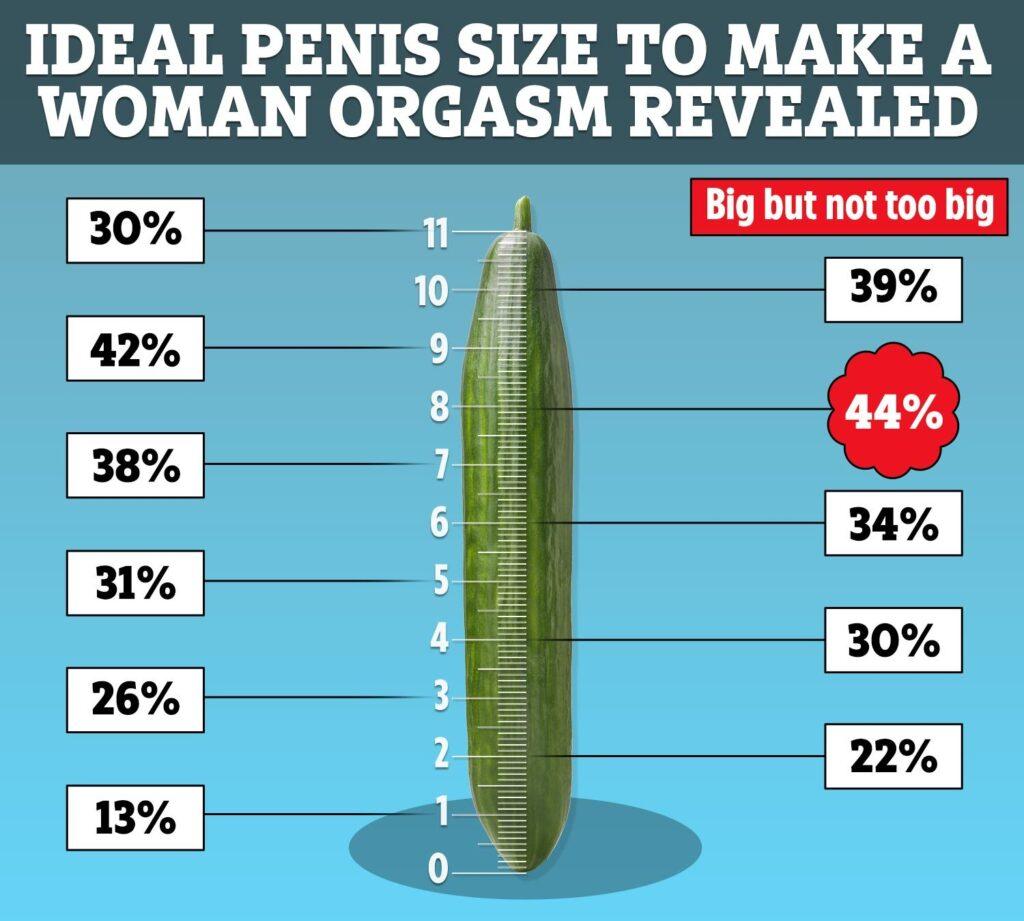 Jaká je průměrná velikost penisu